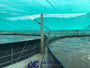 Dây cáp cho đầm nuôi tôm, cáp lụa mạ kẽm nhúng nóng 4mm, Lưới che nắng của Lê Hà Vina, Lưới che nắng, Lưới che nắng Thái Lan